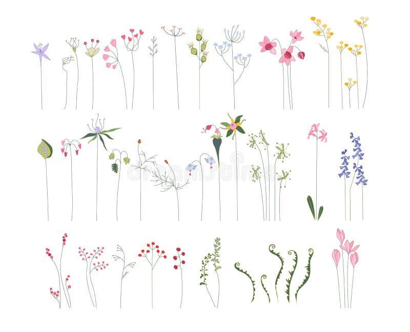 Coleção de flores estilizados diferentes ilustração royalty free