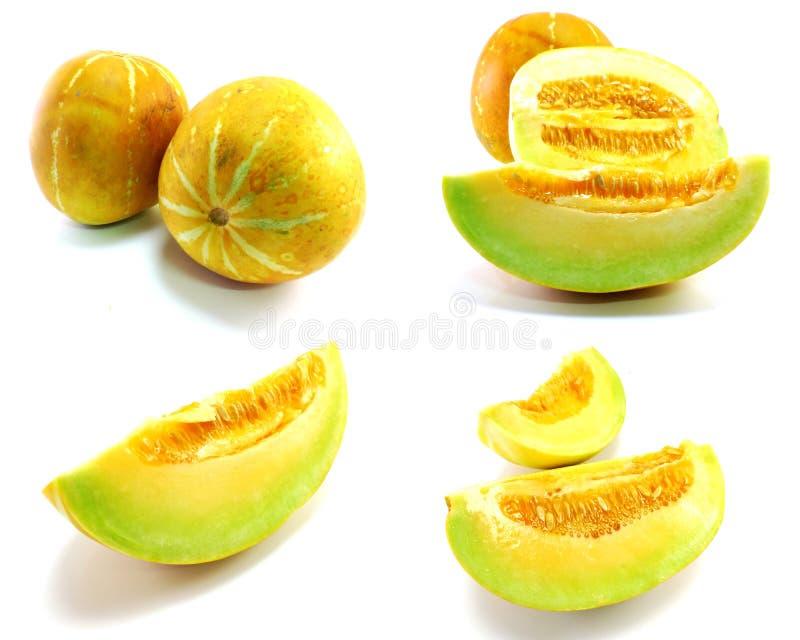 Coleção de frutas frescas do melão fotografia de stock