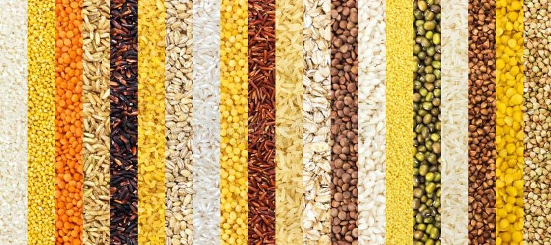 A coleção de fundos diferentes da aveia em flocos, cereais textures a coleção closeup imagens de stock royalty free