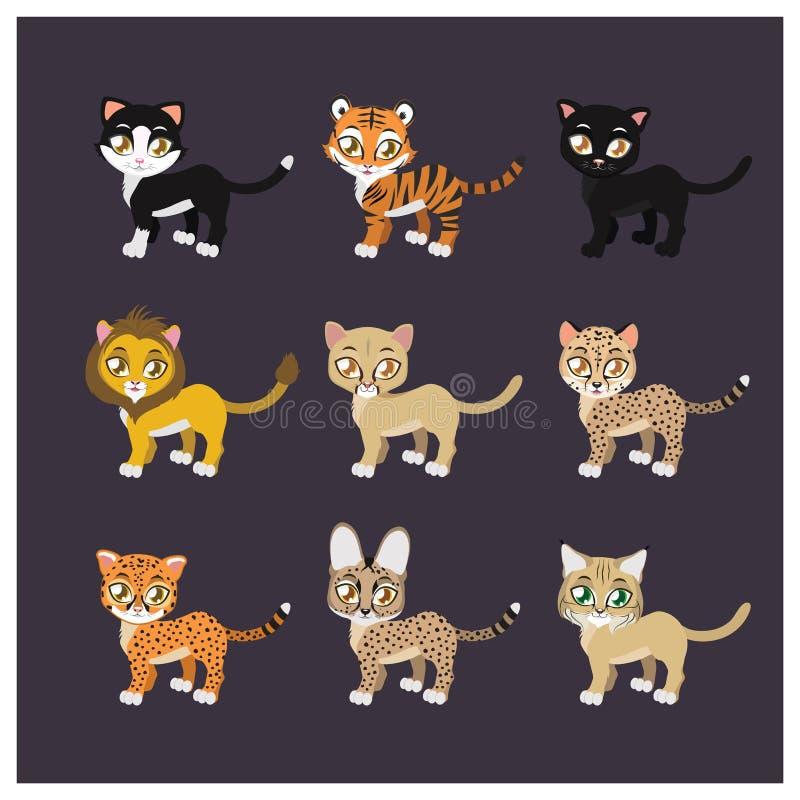 Coleção de nove espécies felinos ilustração royalty free