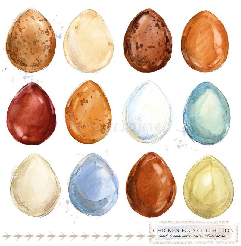 Coleção de ovos coloridos da galinha da aquarela ilustração royalty free