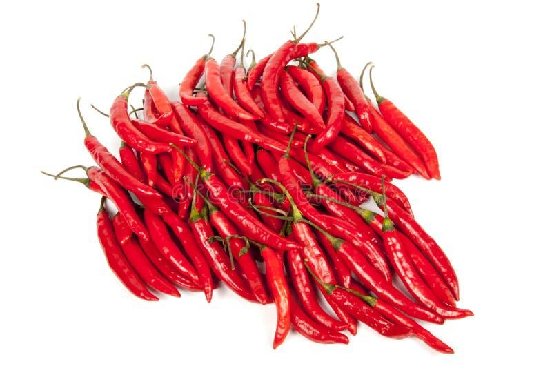 Coleção de pimentões quentes brilhantes vermelhos brilhantes fotografia de stock