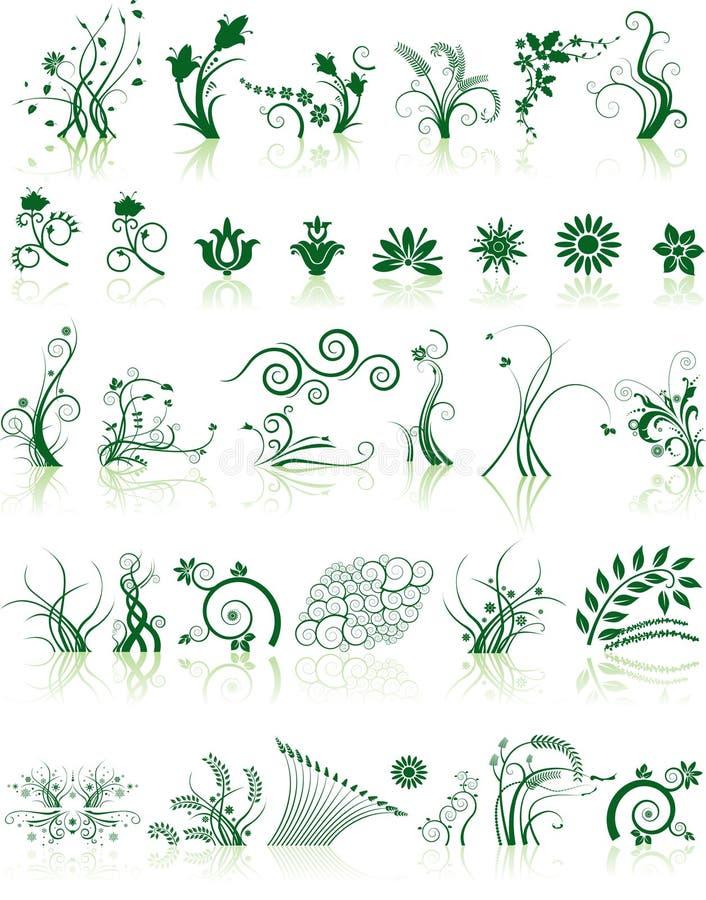 Coleção de projetos florais ilustração do vetor