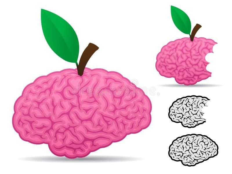 Coleção do alimento da fruta do cérebro ilustração royalty free