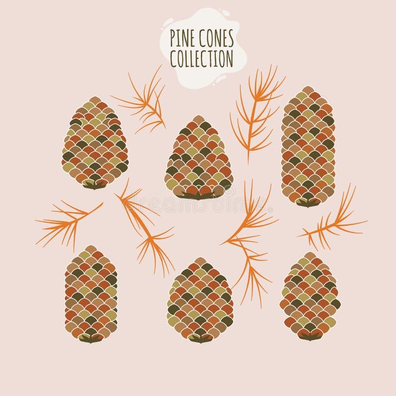 Coleção do cone do pinho de ramos de árvore do Natal com cones e visco do pinho ilustração royalty free