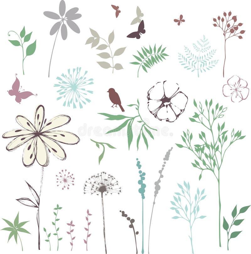Coleção do design floral ilustração stock