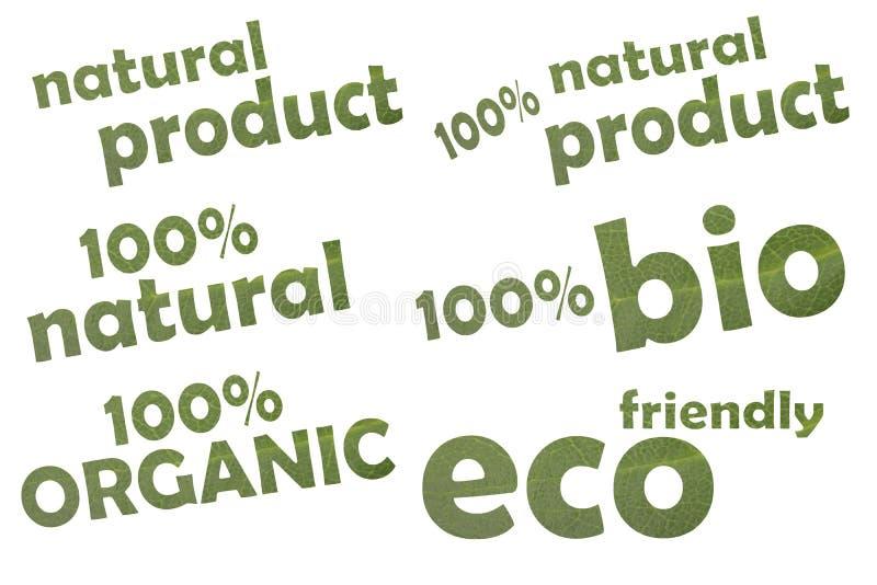 Coleção do eco keywordslike diferente amigável, de 100% bio ou de 100% orgânico - cortado de uma folha verde imagem de stock royalty free