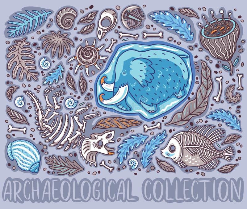 Coleção do fóssil do Triceratops dos desenhos animados, gigantesca no gelo, em samambaias antigas das amonites, em trilobite, em  ilustração stock
