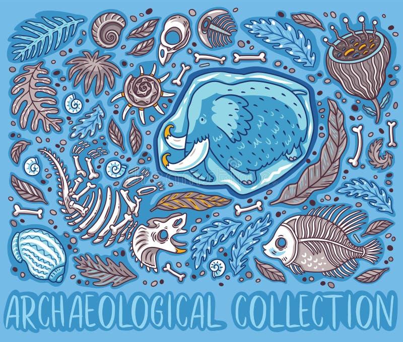 Coleção do fóssil do Triceratops dos desenhos animados, gigantesca no gelo, em samambaias antigas das amonites, em trilobite, em  ilustração do vetor