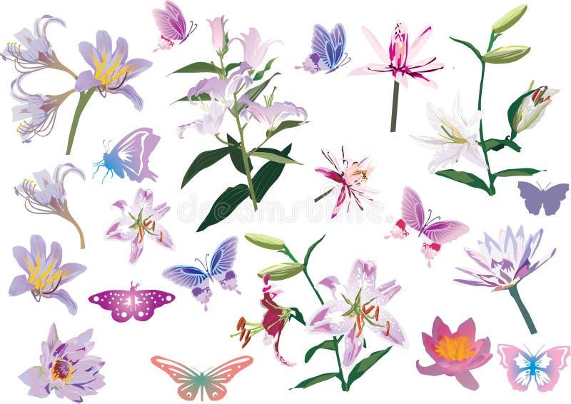 Coleção do lírio e da borboleta isolada no branco ilustração do vetor