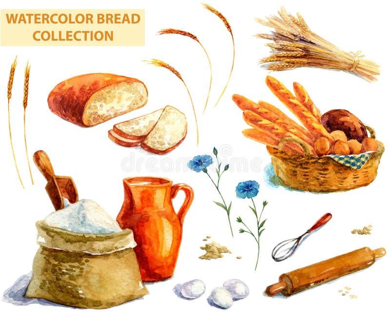 Coleção do pão da aquarela ilustração do vetor