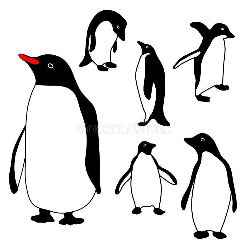 Coleção do pinguim ilustração do vetor