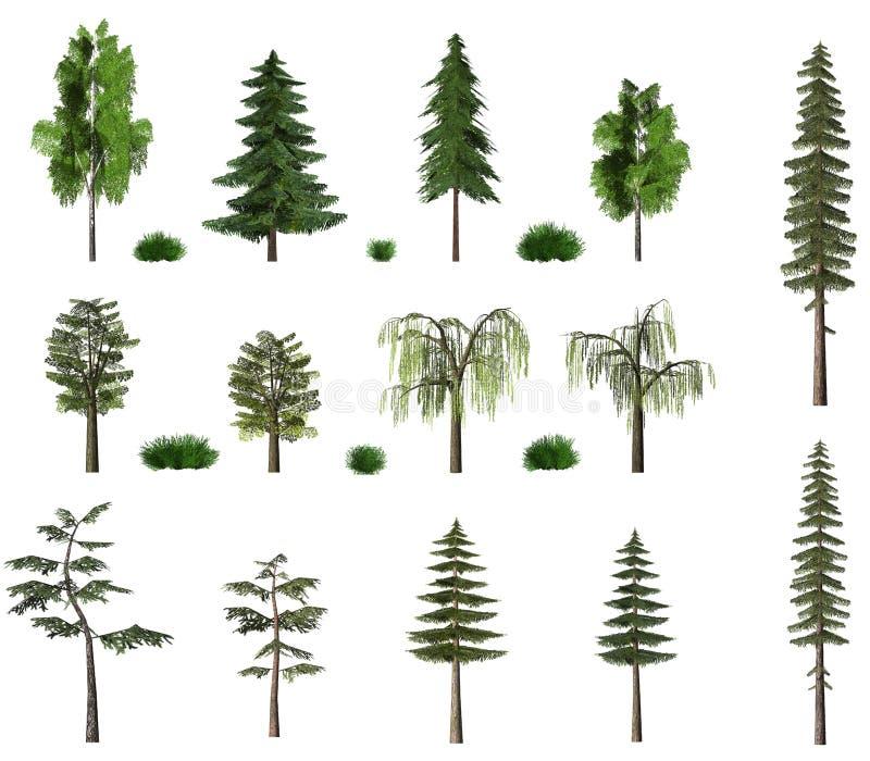 Coleção do quadro de avisos das árvores do verão no branco fotografia de stock royalty free