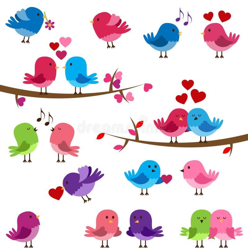 Coleção do vetor de pássaros bonitos do amor ilustração do vetor