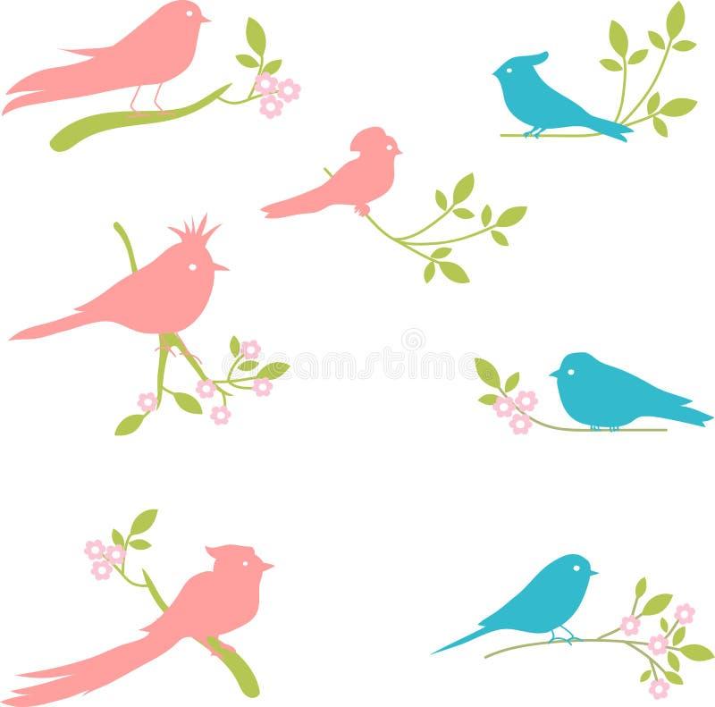 Coleção do vetor de silhuetas do pássaro ilustração royalty free