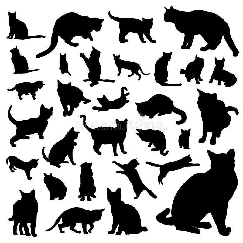Coleção do vetor do gato ilustração royalty free