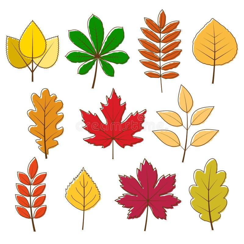 A coleção do vetor do outono coloriu as folhas ilustração do vetor
