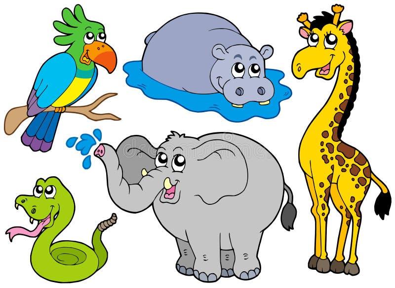 Coleção dos animais dos animais selvagens ilustração royalty free