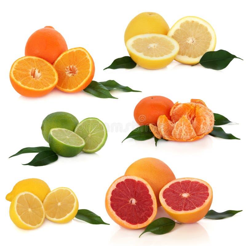 Coleção dos citrinos imagem de stock