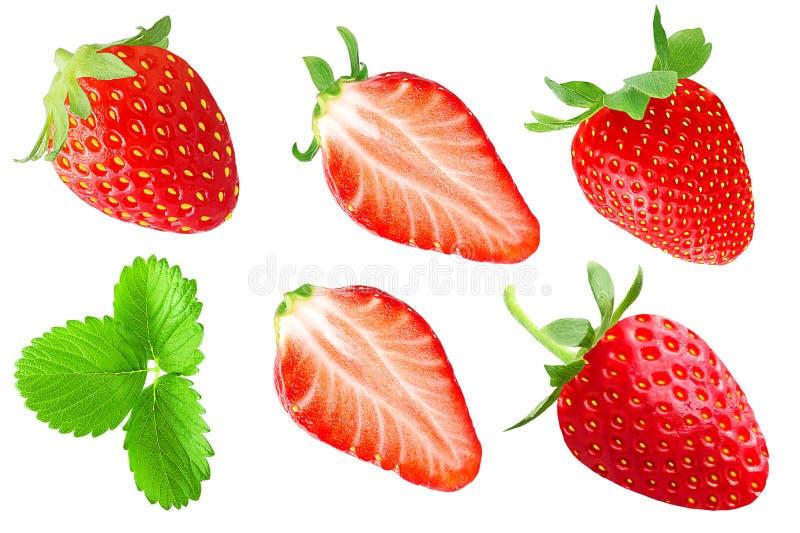 Coleção dos frutos das morangos isolados no branco imagem de stock royalty free