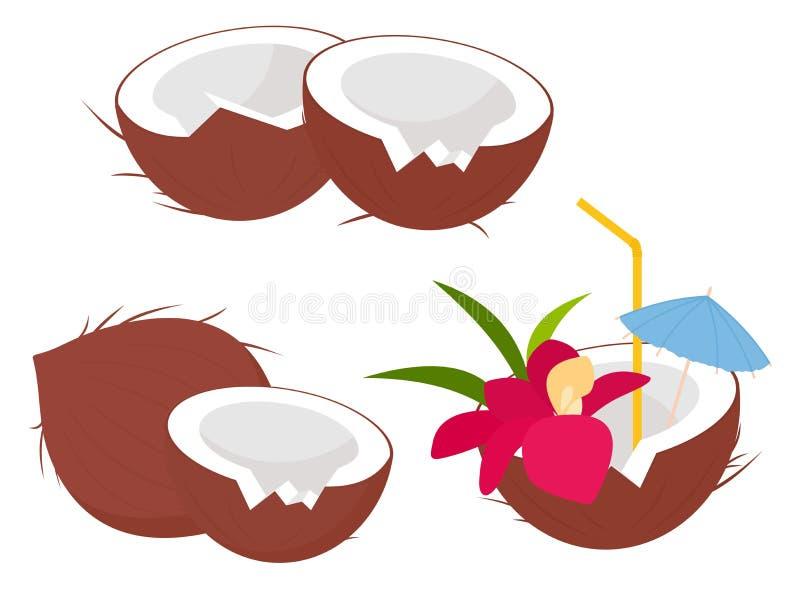 Coleção dos frutos do coco no estilo dos desenhos animados Coco inteiro e meio, bebida fresca do suco do coco Coco do cocktail co ilustração do vetor