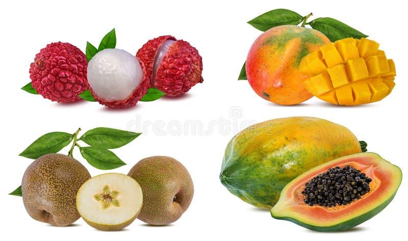 Coleção dos frutos exóticos isolados em um branco imagem de stock royalty free