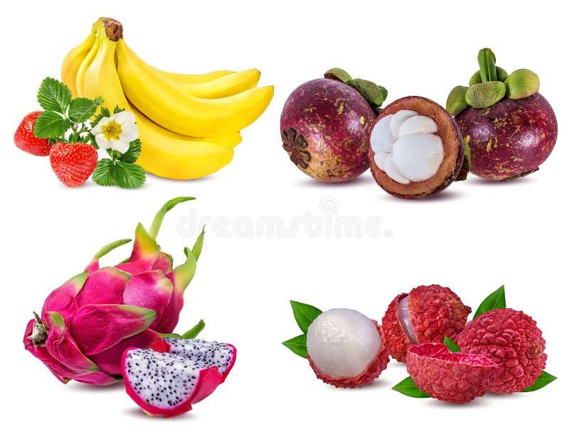 Coleção dos frutos frescos isolados no branco fotos de stock