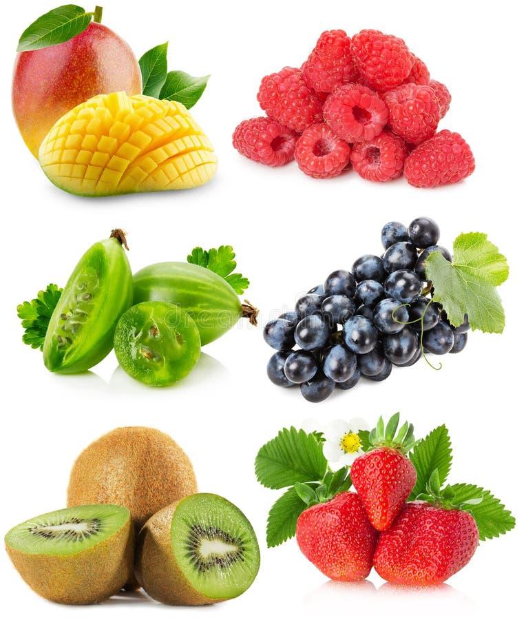 Coleção dos frutos isolados em um fundo branco imagens de stock royalty free