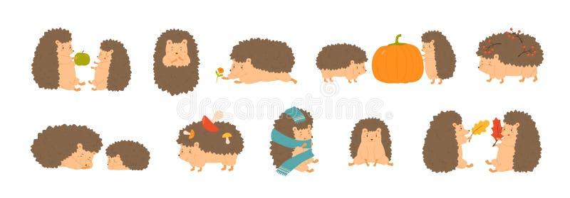 Coleção dos ouriços adoráveis que levam cogumelos e bagas, jogando com as folhas de outono, dormindo Grupo de bonito ilustração stock