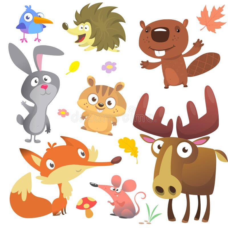 Coleção dos pássaros dos animais da floresta da floresta que inclui alces do pássaro, do ouriço, do castor, do coelho de coelho,  ilustração stock