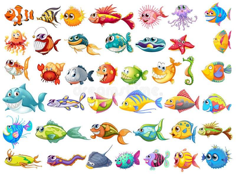 Coleção dos peixes ilustração royalty free