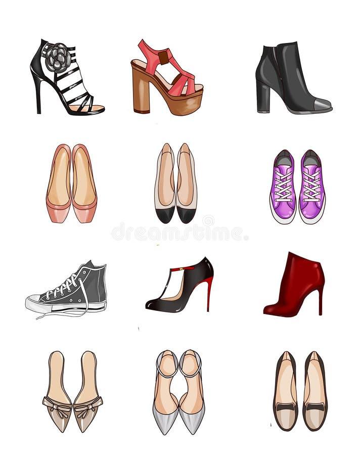 Coleção dos tipos de sapatas ilustração royalty free