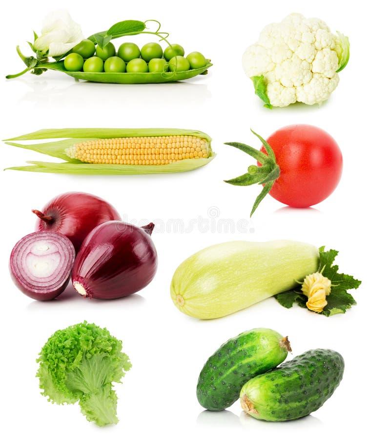 Coleção dos vegetais isolados no fundo branco fotografia de stock