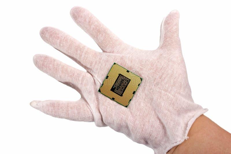 Coleção eletrônica - a mão guarda a microplaqueta de processador do processador central do computador mim imagem de stock royalty free