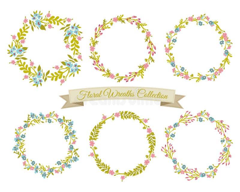 Coleção floral das grinaldas ilustração do vetor