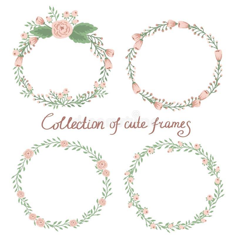 Coleção floral do quadro ilustração stock
