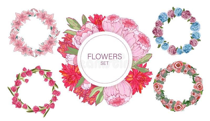 Coleção floral do quadro Ajuste das flores bonitos arranjou o un uma forma da grinalda perfeita para convites do casamento e cart ilustração royalty free