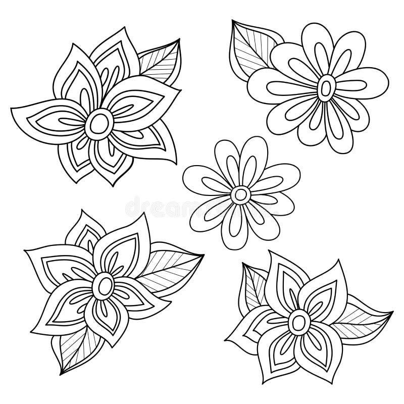 Coleção floral do vetor de elementos tirados mão do projeto ilustração do vetor