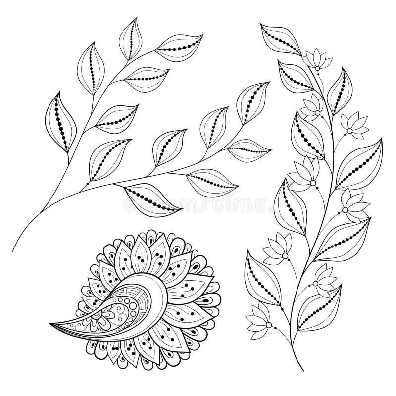 Coleção floral do vetor de elementos tirados mão do projeto ilustração stock