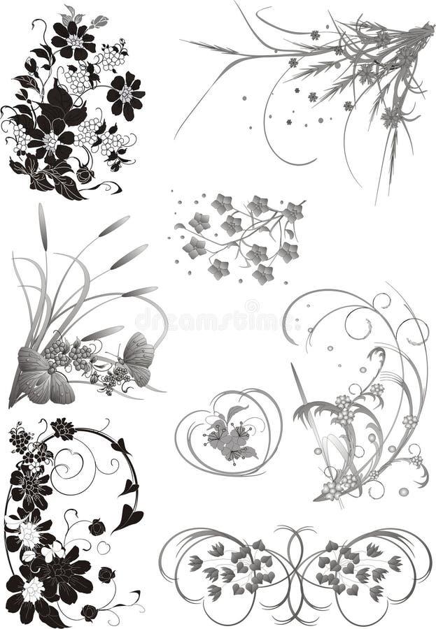 Coleção floral dos elementos ilustração stock