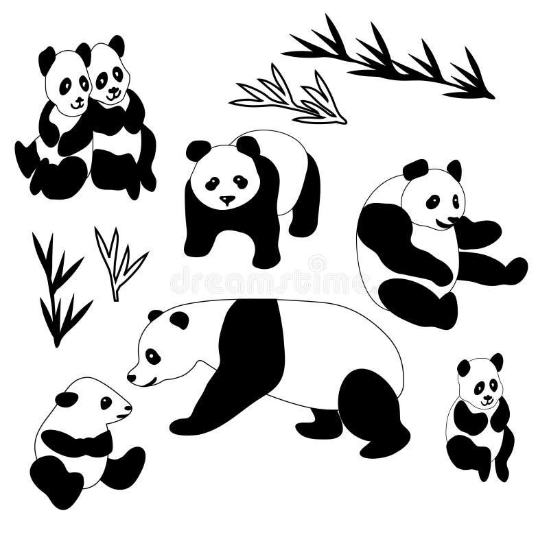 Coleção gigante da panda ilustração royalty free
