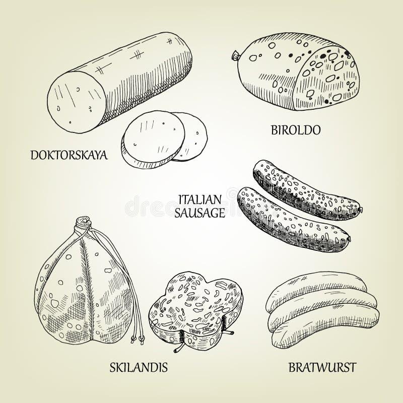 Coleção gráfica das salsichas, dos skilandis, do biroldo, da bratwurst, do doktorskaya e de salsichas tipo frankfurter italianas ilustração do vetor