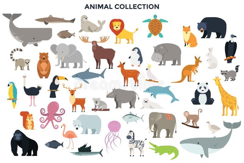 Coleção grande de animais selvagens da selva, do savana e da floresta, pássaros, mamíferos marinhos, peixes ilustração do vetor