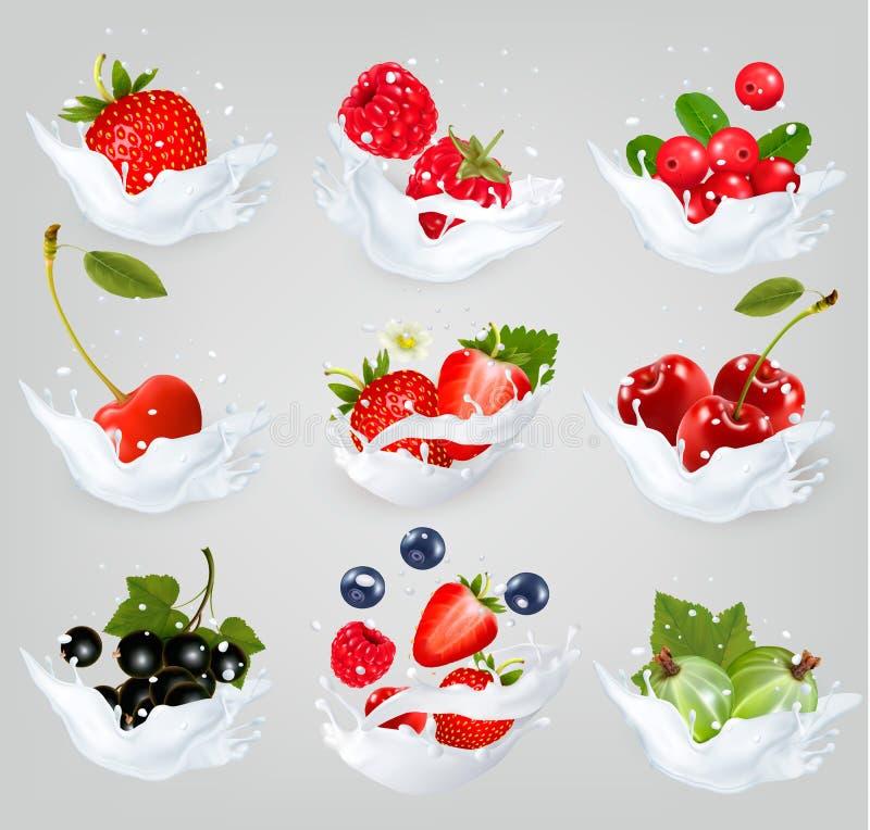 A coleção grande dos ícones do fruto e as bagas em um leite espirram ilustração stock