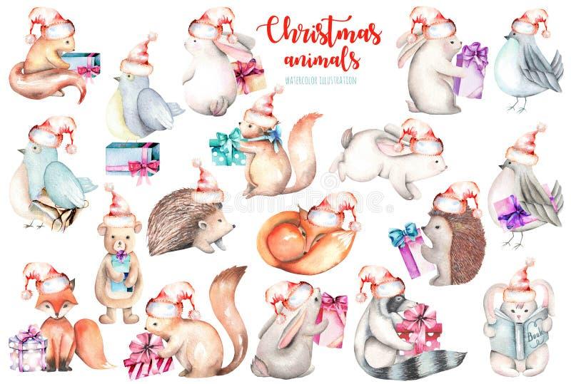Coleção, grupo de ilustrações bonitos dos animais da floresta do Natal da aquarela ilustração stock