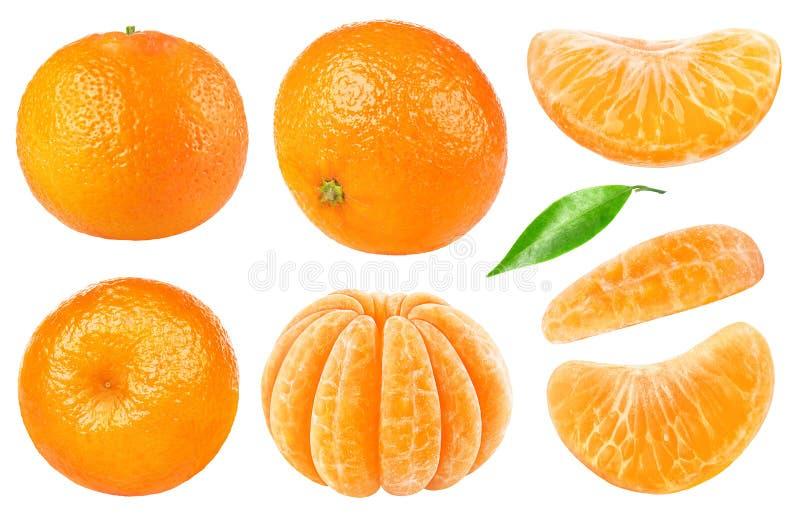 Coleção isolada da tangerina imagem de stock