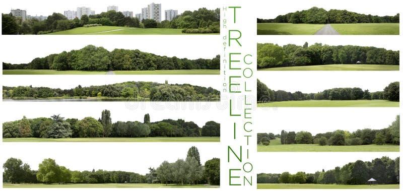 Coleção muito alta de Treeline da definição isolada em um CCB branco fotografia de stock royalty free