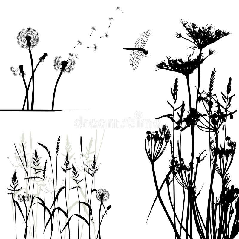 Coleção para desenhistas, vetor da planta selvagem ilustração royalty free