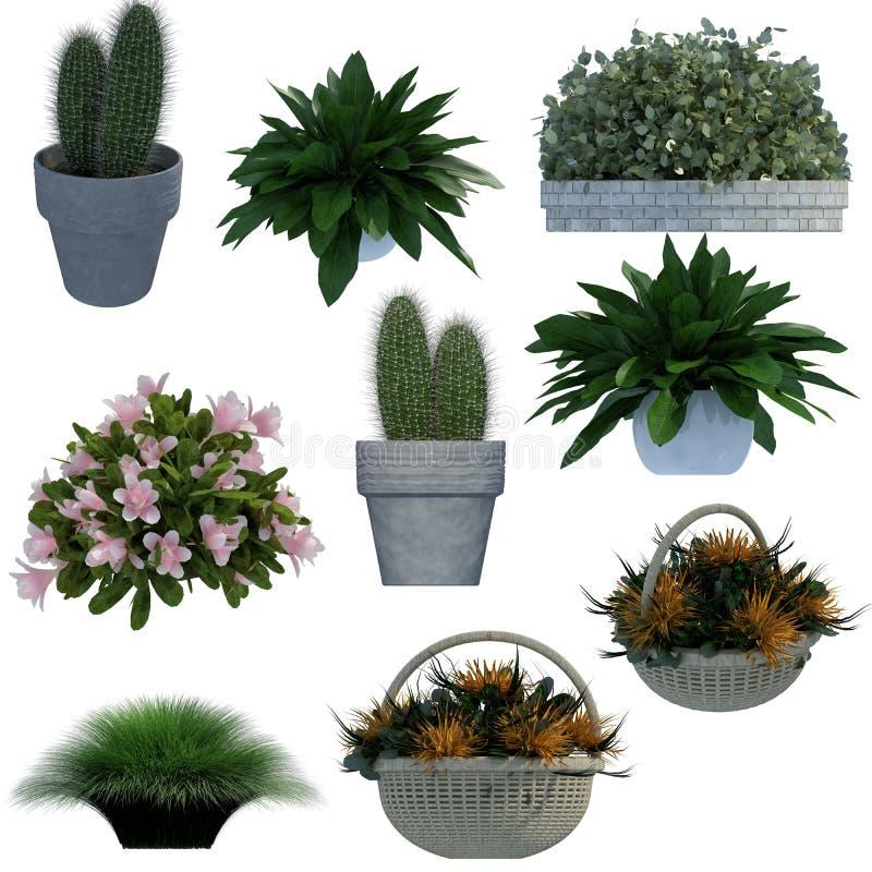 Coleção pequena da planta 3D fotos de stock