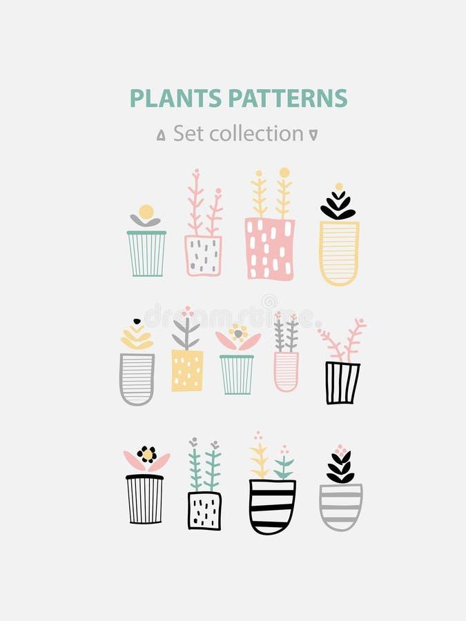 Coleção Potted das plantas plantas carnudas e plantas da casa Arte tirada mão do vetor ilustração royalty free